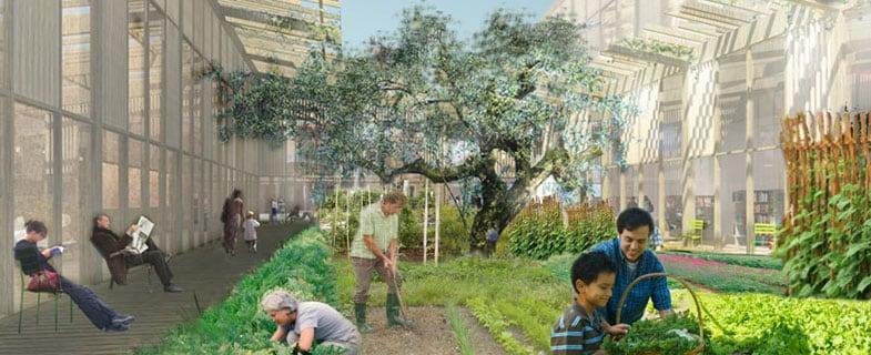 Toward an urban ecosystem