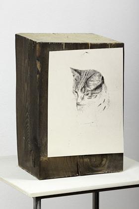 Exhibition of the Ermanno Casoli Contemporary Art Prize