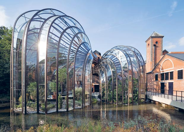 Greenhouses for gin