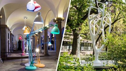 Università degli Studi / Design   Orto Botanico di Brera
