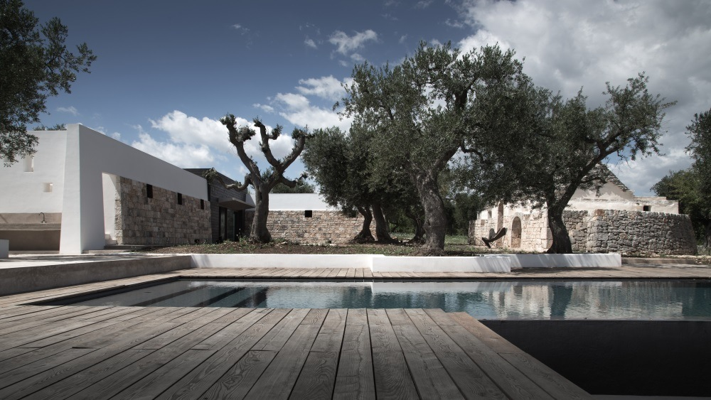 The house among olive trees