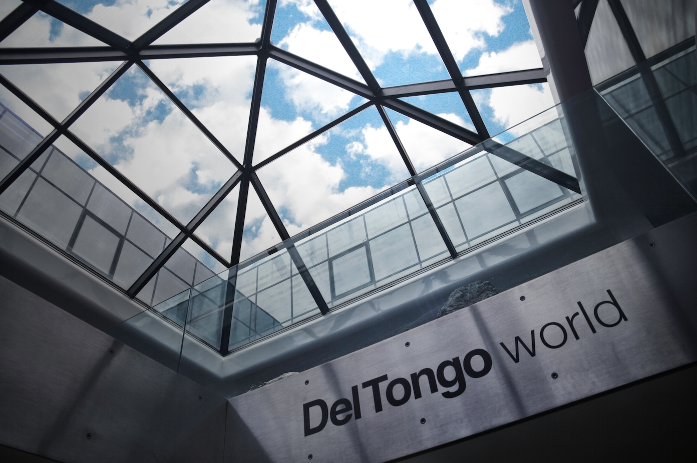 2016 Del Tongo: an intense and very successful year