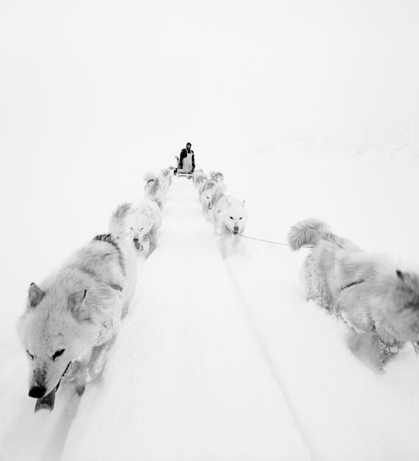Arctic: the last frontier