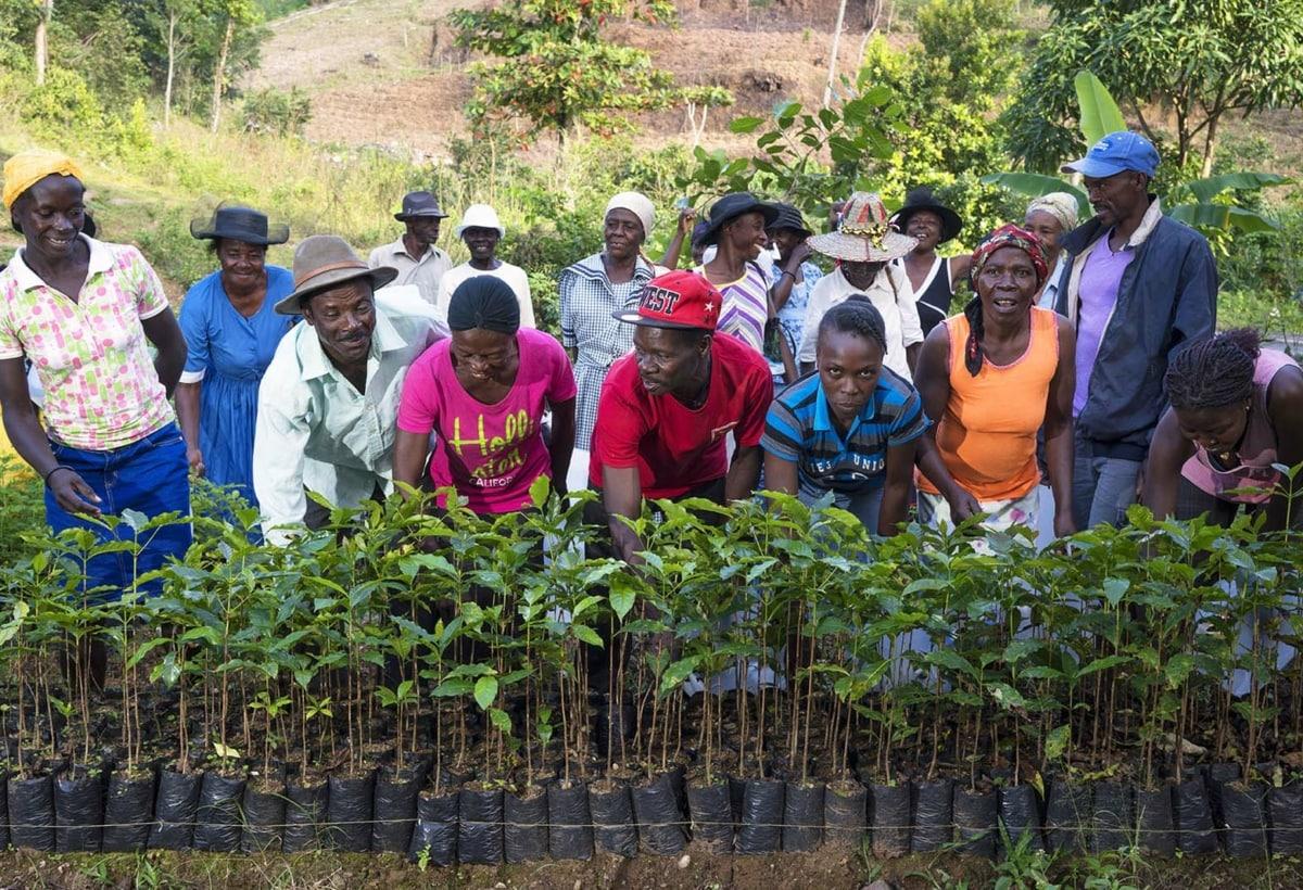 Haiti – Una delle comunità coinvolte nei progetti di Treedom – Piantare alberi è un lavoro a cui si dedica tutta la comunità, per un lavoro che rinsalda i legami sociali