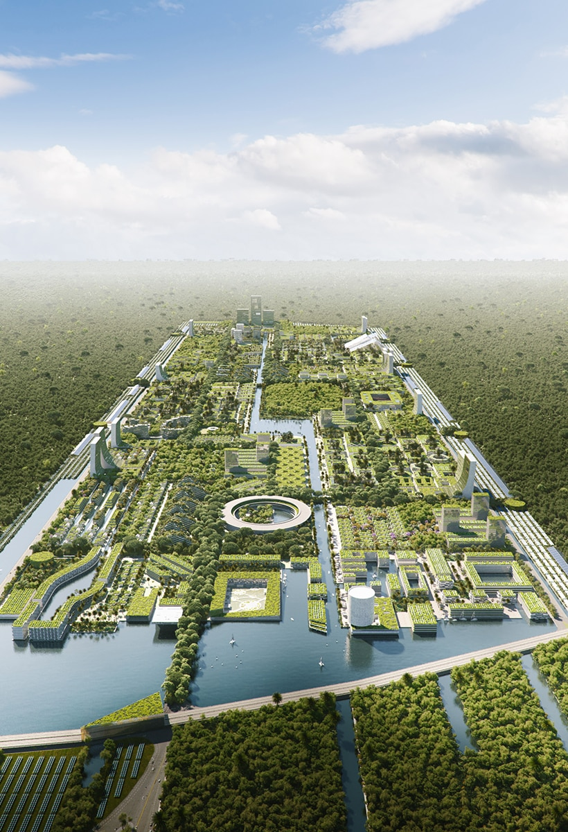 City forests are the future
