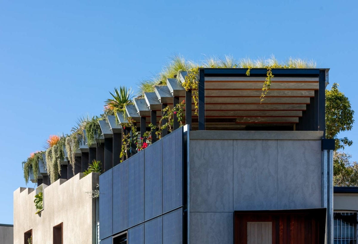 93. WELCOME TO THE JUNGLE HOUSE_ROOF PLANTER 3