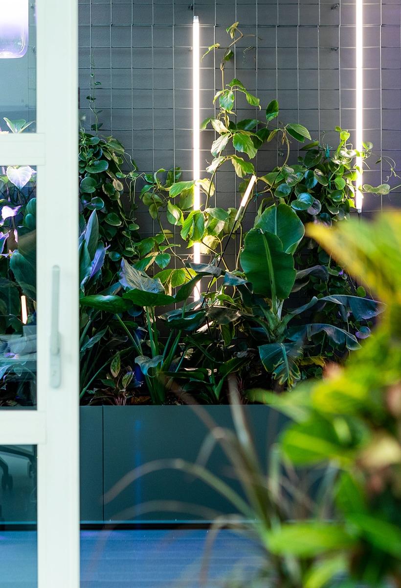 Share green intelligence