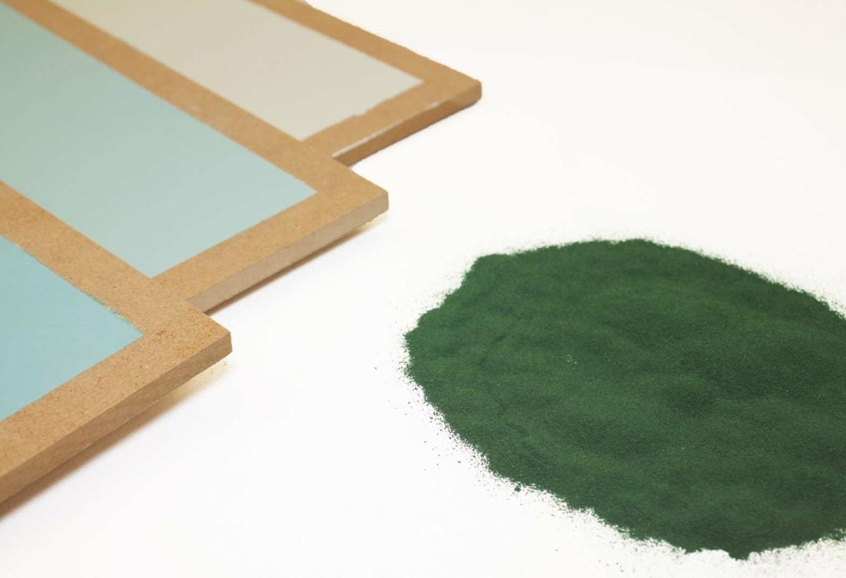 Gruppo Boero prove colore microalghe2