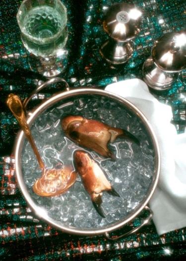 Epochal Banquet 3_Dead Hungry_Bompas_Parr