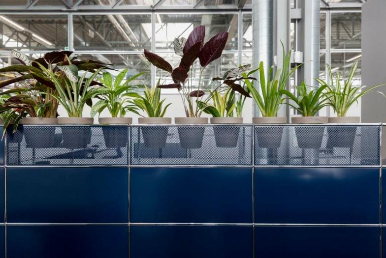 FuoriSalone_2021_Eventi_Brera_Haller_strutture per ospitare il verde indoor